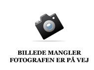 salg af Grønbjerg P Maximum